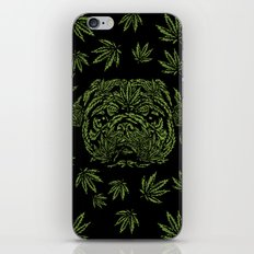 Marijuana of Pug iPhone & iPod Skin