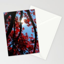 Japanese maple in scarlet against blue fall sky Stationery Cards