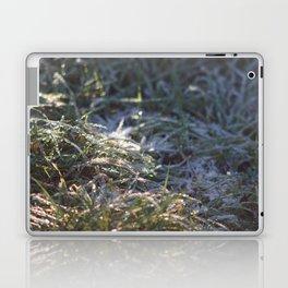 Frosty Underfoot Laptop & iPad Skin