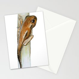 Cute Little Tadpole Stationery Cards