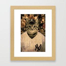 Baseball Cat Framed Art Print