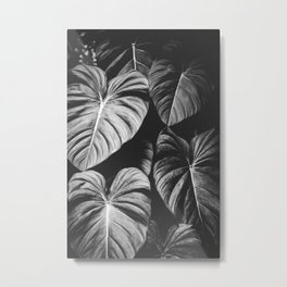 Monstera Black and White Metal Print