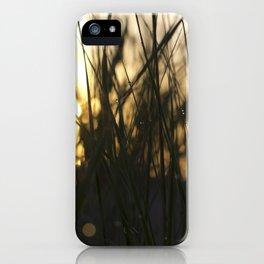 Dune grass past dawn iPhone Case