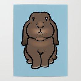 Coco the Minilop Bunny Poster