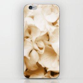 Nostalgic Hydrangea Floral iPhone Skin