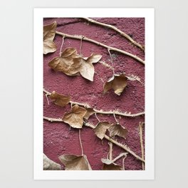 Vined Art Print
