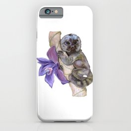 Pygmy Marmoset (Small Monkey) iPhone Case