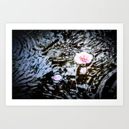 Cherry Blossoms on the Water Art Print