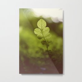 Into the green Metal Print