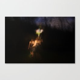 Painting.14 Canvas Print