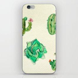 Desert Life iPhone Skin