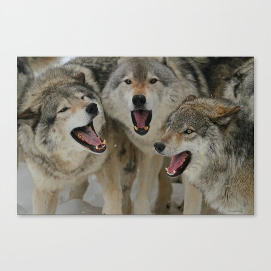 Watching Youtube Canvas Print