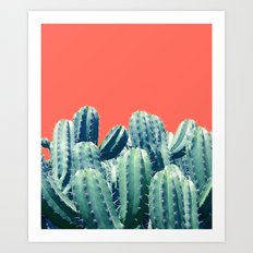 Cactus on Coral #society6 #decor #buyart Art Print