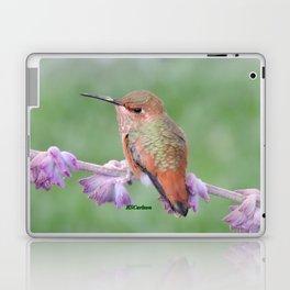 DO NOT Raid My Patch of Sage Laptop & iPad Skin