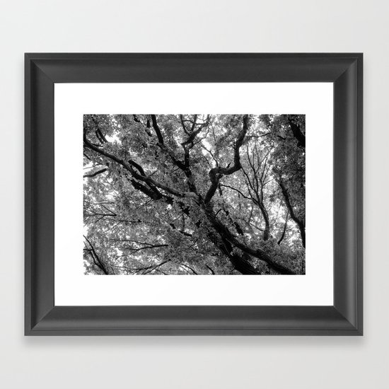 Under the Elm Framed Art Print