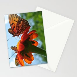 Two Butterflies (*Koinonia*) Stationery Cards