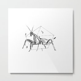 Geometric Season1:5 Mantis Metal Print