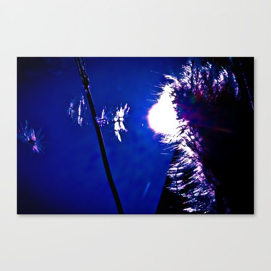 Float away. Canvas Print