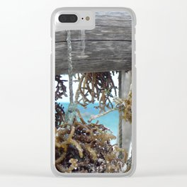 Drying Seaweed Zanzibar Clear iPhone Case
