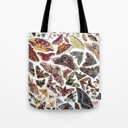 Moths of North America Tote Bag
