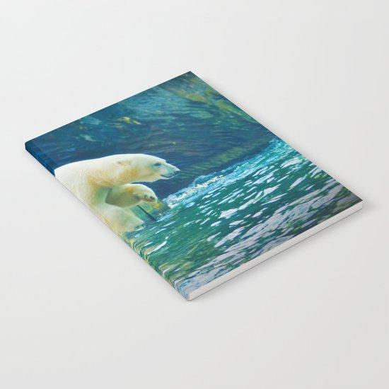 Polar Notebook