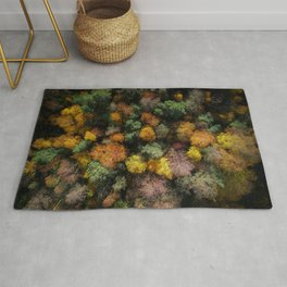 Autumn Forest - Aerial Photography Rug