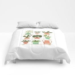 Plant Shelves Comforters