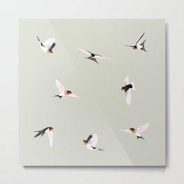 Dance of the welcome swallows Metal Print