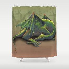 Sleeping dragon Shower Curtain