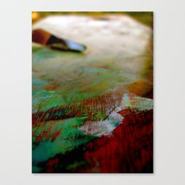 Palette Cleanser Canvas Print