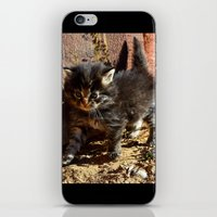 chewbacca iPhone & iPod Skins featuring Chewbacca reborn  by North 10 Creations