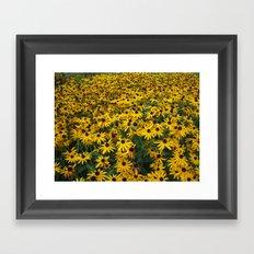 Sept. Gardens pic 044 Framed Art Print