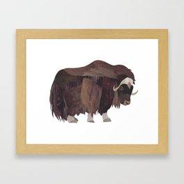 Musk Ox Framed Art Print