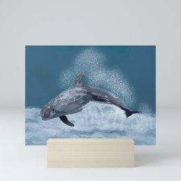 Risso's dolphin (Grampus griseus) Mini Art Print