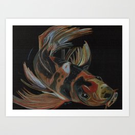 Koi fish on black Art Print
