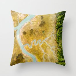 Aerial Study 1 Throw Pillow