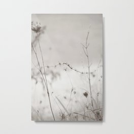 Dreamy Meadow with Queen Anne's Lace and Barbed Fence -- Sepia Black and White Photo Metal Print