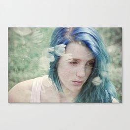 Dulcet Canvas Print