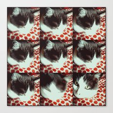 The princess cat Canvas Print
