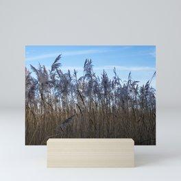 Amongst the Reeds Mini Art Print