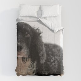 Dog by Dave Francis Comforters