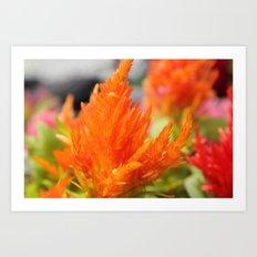 Orange Flora Art Print