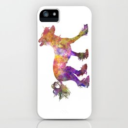 Chinese crested dog 01 in watercolor iPhone Case
