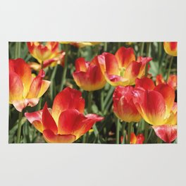 Tulips Flower red yellow color Rug