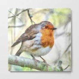 Christmas Robin Redbreast Winter Watercolor Metal Print