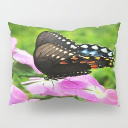 Swallow Tail Butterfly Pillow Sham