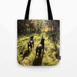 Tennis Ball Season Tote Bag