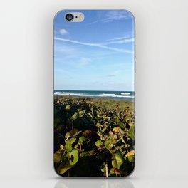 Hobe Sound Beach iPhone Skin