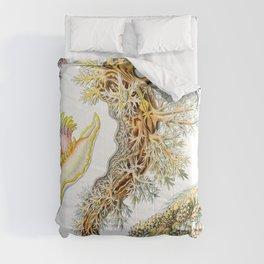 Ernst Haeckel Comforters