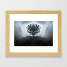 Kaleidoscape: Pacaya Framed Art Print